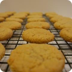 Cherrybrook Kitchen Sugar Cookies